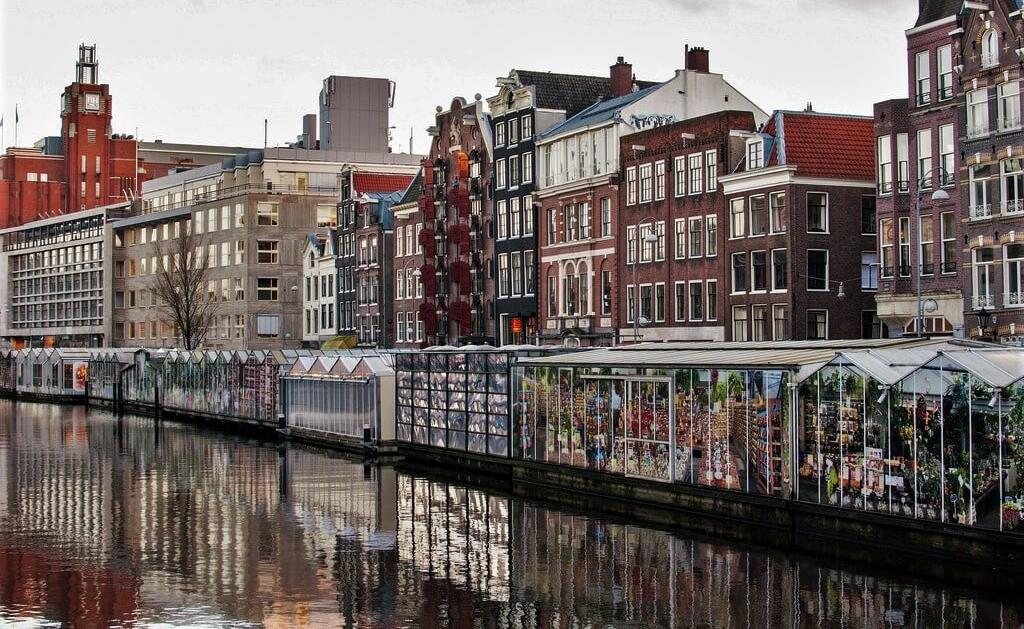 бесплатные развлечения в Амстердаме рынок цветов