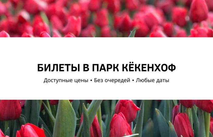 Кёкенхоф 2020 купить билеты в парк цветов