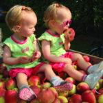 детские фермы