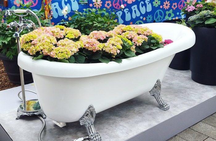 кекенхоф 2019 ванна с цветами