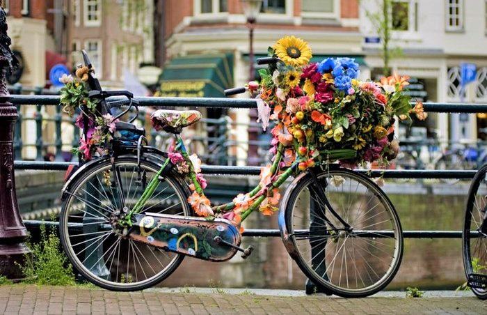 факты об амстердаме