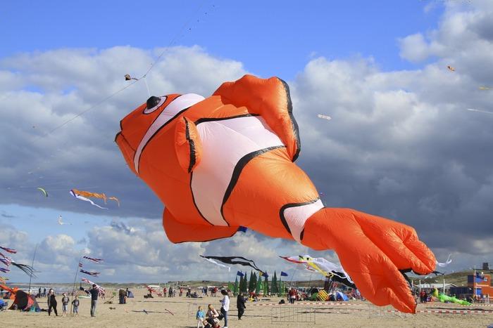 фестиваль воздушных змеев рыба