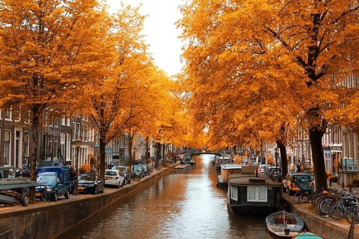 голландия осенью каналы амстердама