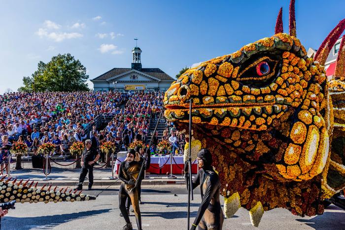 парад цветов Нидерланды
