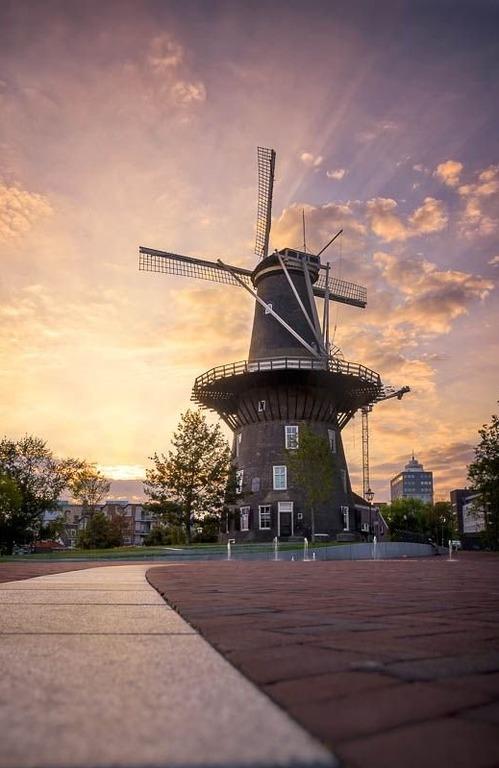 голландские мельницы De Valk