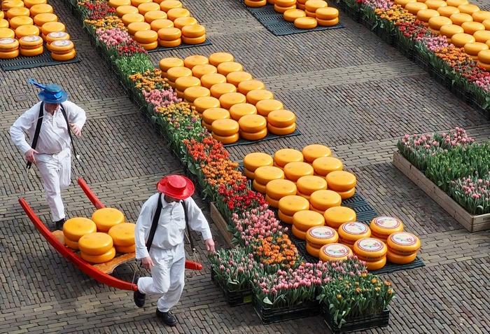 сырные рынки Нидерланды
