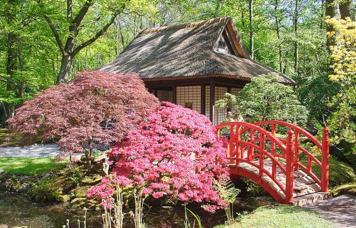 Интересные места в Голландии японские сады в Гааге